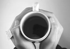 thé chaud photographie stock libre de droits