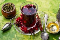 Thé chaud avec la canneberge photo libre de droits