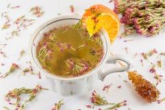 Thé chaud d'amer-herbe dans une tasse de thé Images stock