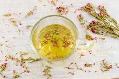 Thé chaud d'amer-herbe dans une tasse de thé Image stock