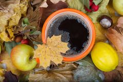 Thé chaud dans une tasse orange sur les feuilles sèches Images stock