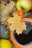 Thé chaud dans une tasse orange sur les feuilles sèches Image stock