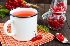 Thé chaud de baie dans une tasse blanche sur un fond en bois foncé Thé avec le viburnum Image libre de droits