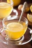 Thé chaud de gingembre de citron dans la tasse en verre Photos stock