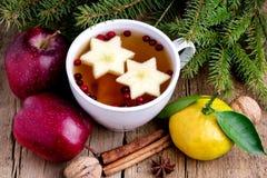 Thé chaud de Noël avec la tasse de fond d'Apple Berry Cinnamon Wooden de branches chaudes Horiz de sapin de fruits de fond de Noë image stock
