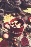 Thé d'Apple et de canneberge dans la tasse rouge, écharpe de chauffage, pommes, écrous Photos libres de droits