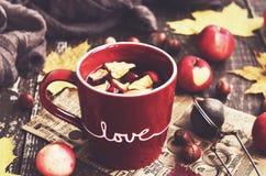 Thé d'Apple et de canneberge dans la tasse rouge, écharpe de chauffage, pommes, écrous Image stock