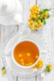 Thé d'aubépine Photographie stock