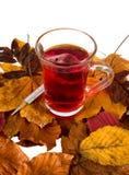 Thé d'automne avec le feuillage et le thermomètre clinique Image stock