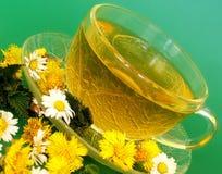 Thé d'herbe photo libre de droits