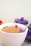 Thé d'herbe avec des wildflowers Images libres de droits