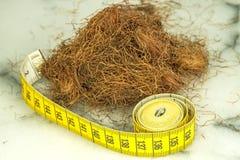 Thé de barbe de maïs Photographie stock libre de droits