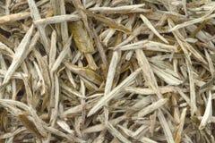 Thé de blanc chinois comme fond Photographie stock