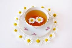 Thé de camomille Image stock