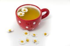 Thé de camomille dans la tasse Images stock