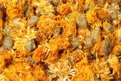 Thé de chrysanthème Photos stock