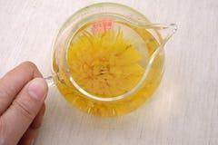 Thé de chrysanthème Photos libres de droits