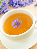 Thé de Cornflower Image stock