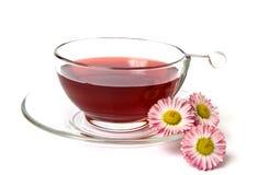 thé de daisys de cuvette images stock