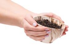 Thé de feuille dans un pial des mains femelles image libre de droits