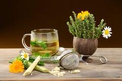 Thé de fines herbes. images stock