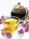 Thé de fines herbes avec des fleurs de trèfle Photos stock