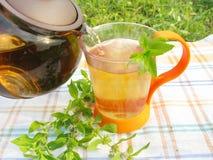 Thé de fines herbes avec la menthe Photos stock