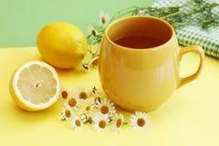 Thé de fines herbes avec le citron et la camomille Photographie stock
