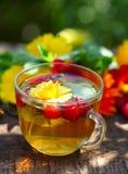 Thé de fines herbes avec le souci Image stock