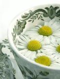 Thé de fines herbes - camomille Image libre de droits