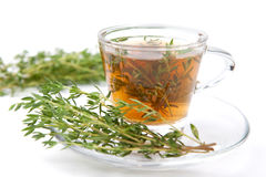 Thé de fines herbes de thym avec la feuille fraîche autour Photographie stock libre de droits