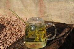 Thé de fines herbes frais Image libre de droits