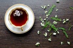 Thé de fines herbes naturel organique aromatique de millefeuille Image stock