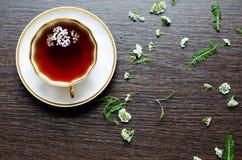 Thé de fines herbes naturel organique aromatique de millefeuille Images stock