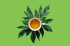 Thé de fines herbes ou vert parfumé et sain frais dans une tasse sur un fond vert Temps de thé Image libre de droits