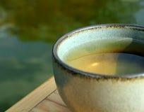 thé de fines herbes vert Images libres de droits