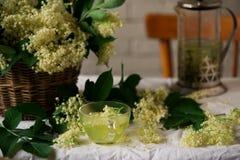 Thé de fleur de sureau Vintage de style Photos libres de droits