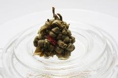 Thé de floraison Image libre de droits