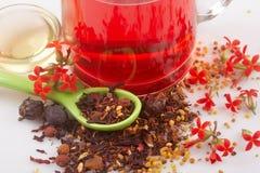 Thé de fruit Photos stock