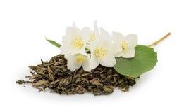 Thé de jasmin avec des fleurs de jasmin sur le blanc Images stock
