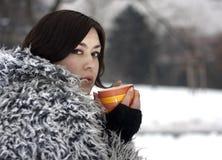 Thé de l'hiver photographie stock