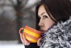 Thé de l'hiver photo stock