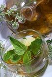 Thé de la collecte des herbes et de la menthe medicative dans un transparen images libres de droits