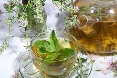 Thé de la collecte des herbes et de la menthe medicative dans un transparen image libre de droits