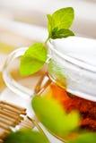 Thé de menthe fraîche dans la tasse en verre Images libres de droits