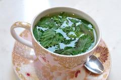 Thé de menthe poivrée Images stock