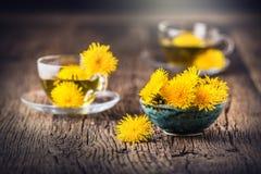 Thé de pissenlit Fleurs de pissenlit et tasses de thé jaunes Image libre de droits