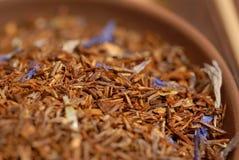 Thé de Roibush Image stock