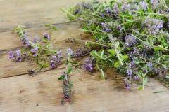 Thé de thym sur une table en bois Fleurs de thym en nature Le thym est utilisé généralement dans la cuisine et en phytothérapie photographie stock