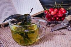 Thé en bon état dans une tasse en verre avec des cerises Images libres de droits